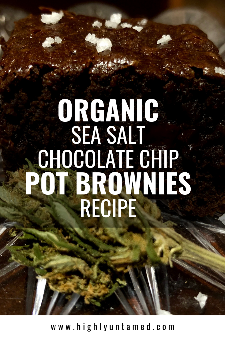 Organic Sea Salt Chocolate Chip Pot Brownies Recipe - HIGHLY UNTAMED